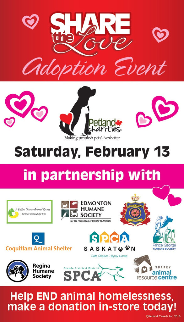 Petland Share the Love Campaign 2016