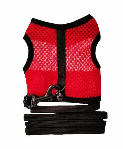 Small Animal Harness and Lead Set; available in 4 sizes.-Accessories-Pawise-Petland Canada