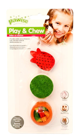 Wood Play & Chew Small Animal Toy 3pcs-Treats & Sticks-Pawise-Pineapple-Petland Canada