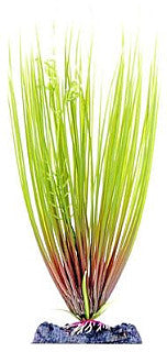 Sinker Plant Hair Grass Small