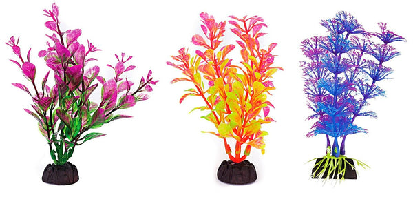 Aquaplant 4in Colorful 6pc Bag
