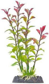 Finding Nemo Ludwigia Md Red Plant Licensed