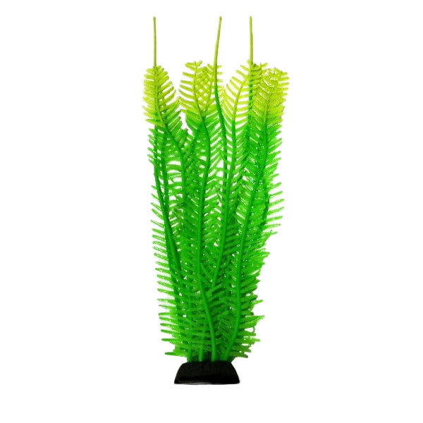 "AquaLand Feather Algae Silicone Aquarium Plant-Decor-AquaLand-9""-Petland Canada"