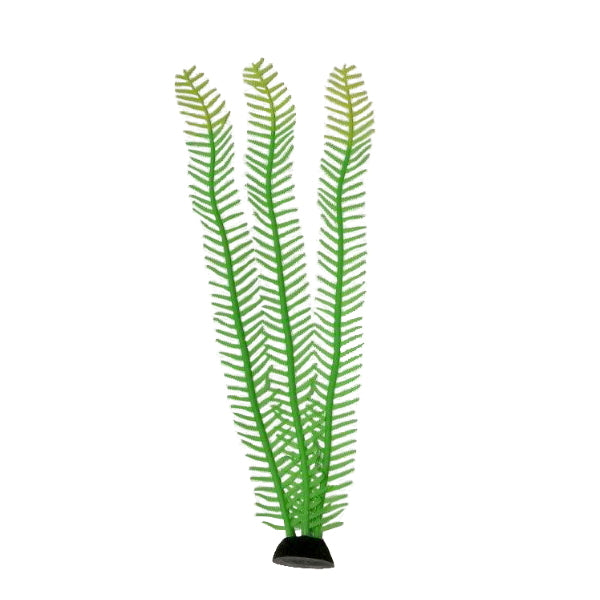 "AquaLand Feather Algae Silicone Aquarium Plant-Decor-AquaLand-14""-Petland Canada"
