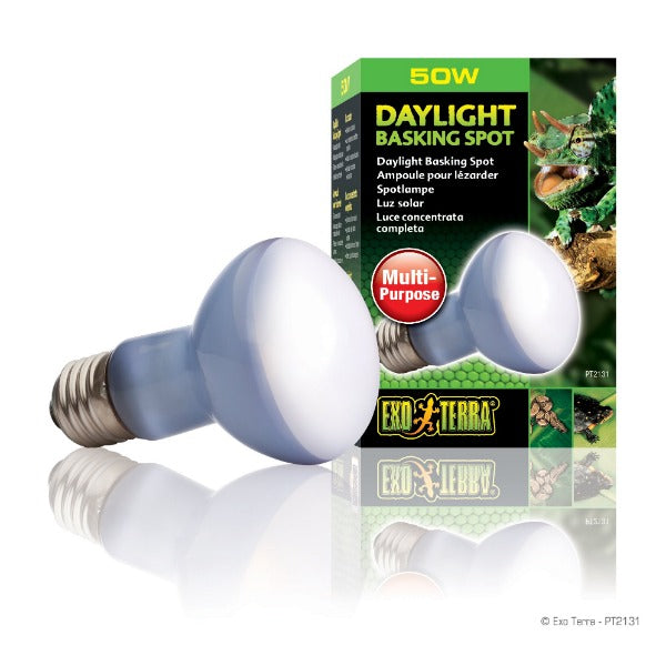 Exo Terra Daylight Basking Spot Lamp; Available in different sizes