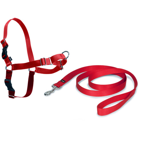 Petsafe Easy Walk Harness with Lead