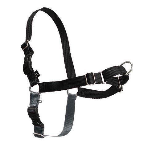 Petsafe Easy Walk Harness with Lead-PetSafe-Small-Black-Petland Canada