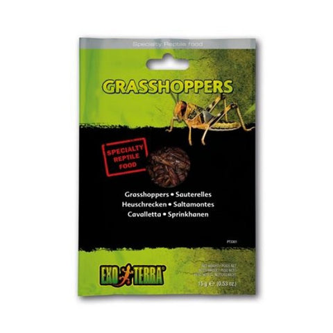 Exo Terra Vacuum Packed Grasshoppers; Available in 2 sizes