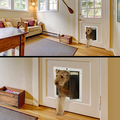 PlexiDor Door Mount Performance Pet Doors; Plexi is available in a variety of sizes and colours