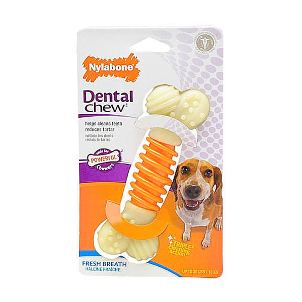 Pro Action Dental Chew Bacon Flavor Small Each-Toys-Nylabone-Petland Canada