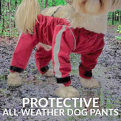 FouFouDog Bodyguard Dog Pants