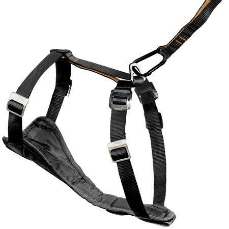 Kurgo Black Tru-Fit Dog Harness ; Available in various sizes