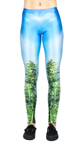 Day Canna Leggings! - Miss Mary Jane Co.