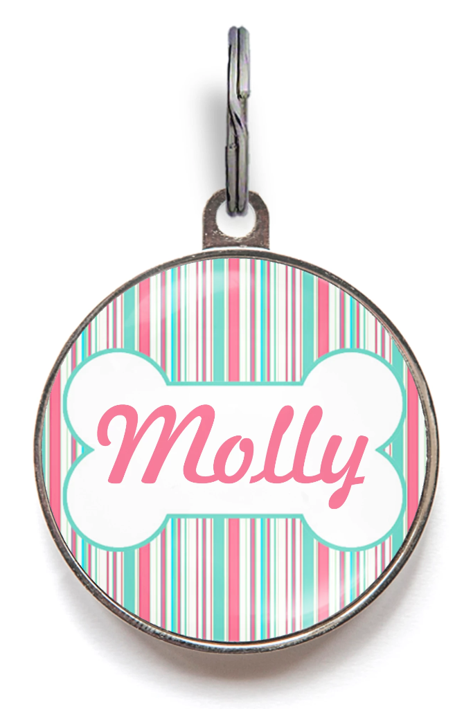 Aqua & Pink Stripe Dog ID Tag