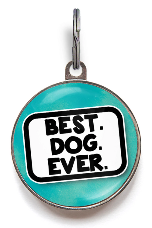 Best Dog Ever Dog ID Tag