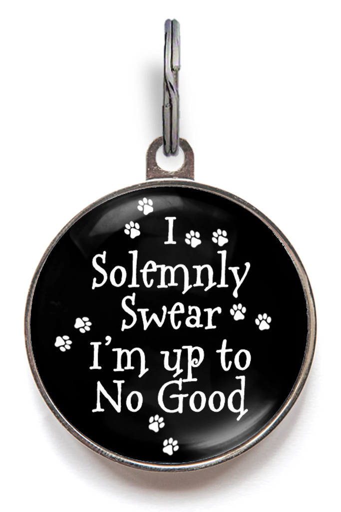 I Solemnly Swear That I am Upto No Good Pet ID Tag