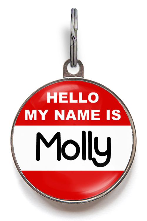 Custom Hello My Name Is Pet ID Tag