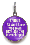Purple Sunburst Dog Name Tag