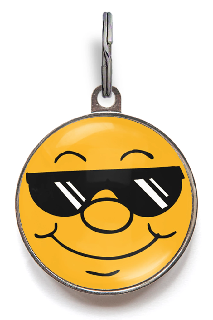 Lil Ray Of Sunshine Pet ID Tag