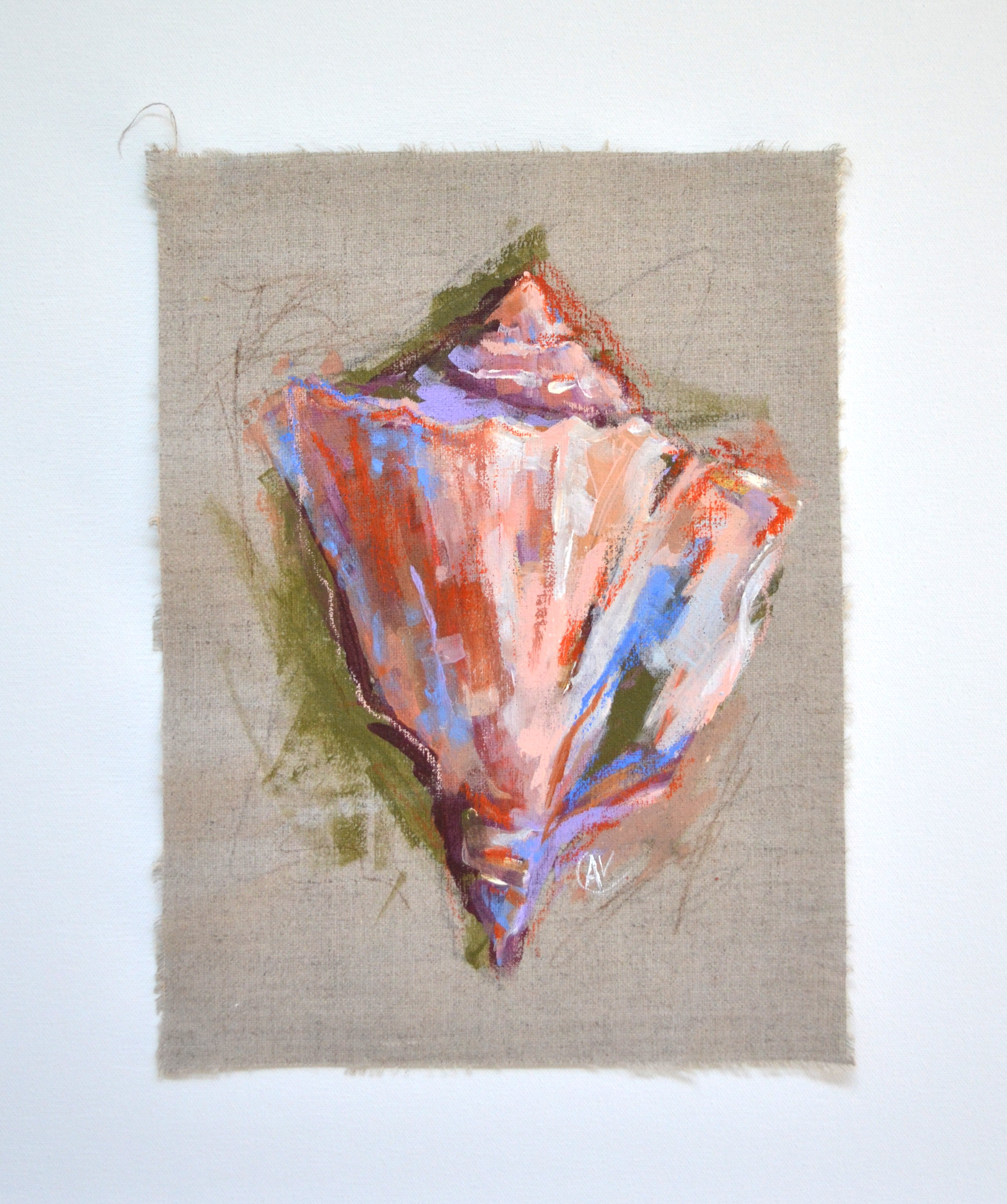 Seashell Study - Tiny Dancer