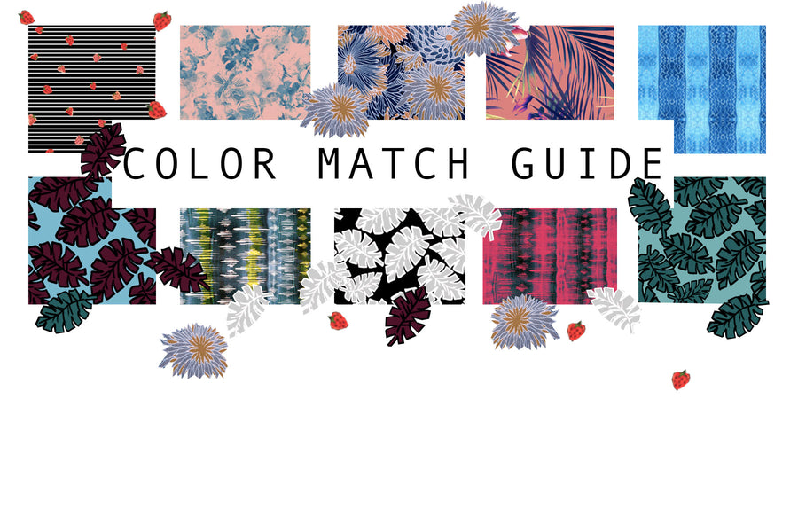 COLOR MATCH GUIDE