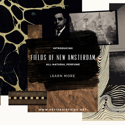 Introducing: Fields of New Amsterdam