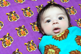 Roar | Cotton Swaddle Duo