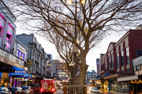 Courtenay Place Winter