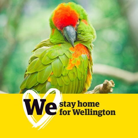 WeWellington Facebook Profile Frame - We Stay Home for Wellington