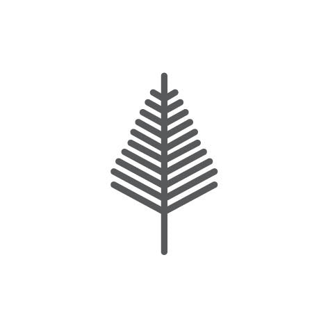 Oriental Bay tree brand icon