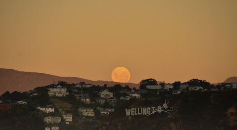Moon rising behind windy Wellington sign