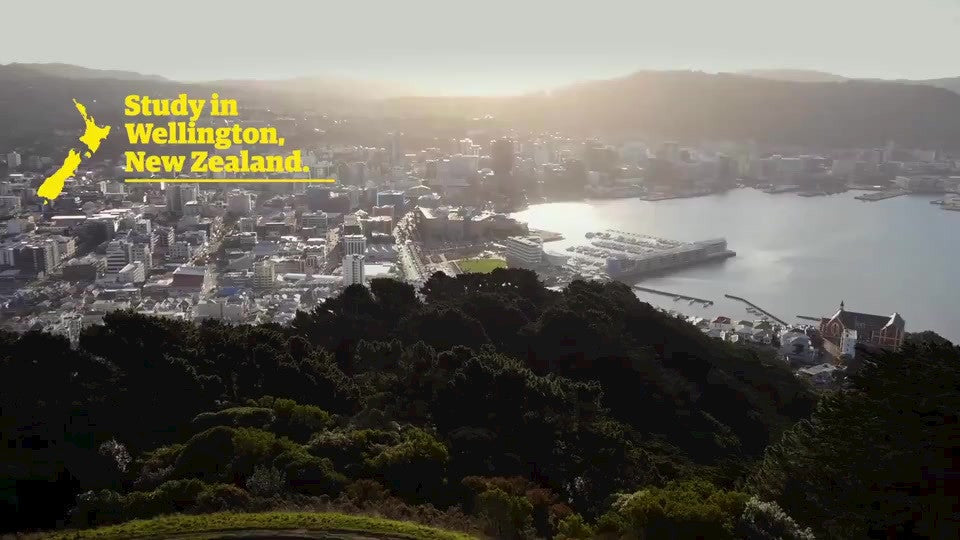 Study in Wellington video - Japanese subtitles