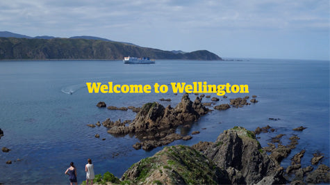Welcome to Wellington