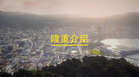 Introducing Wellington - Mandarin subtitles