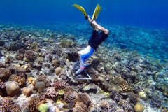 Indonesia Coral Farming