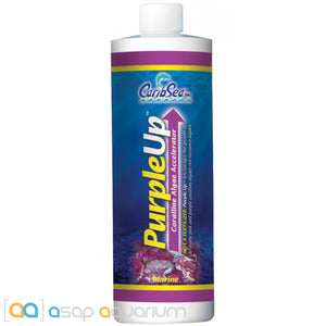 CaribSea Purple-Up Coralline Algae Accelerator 16 oz - ASAP Aquarium