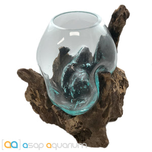 Betta Fish Bowl Unique Molten Glass on Teak Driftwood M205 - ASAP Aquarium