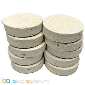 10 LARGE Reef Frag Discs Cured for Live Coral Propagation - ASAP Aquarium