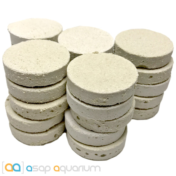 25 LARGE Reef Frag Discs Cured for Live Coral Propagation - ASAP Aquarium