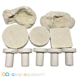 10 Assorted Reef Frag Plugs, Rocks, Discs, Tiles Cured for Live Coral Propagation - ASAP Aquarium