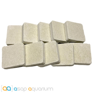 10 Reef Frag Tiles Cured for Live Coral Propagation - ASAP Aquarium