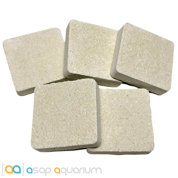 5 Reef Frag Tiles Cured for Live Coral Propagation - ASAP Aquarium