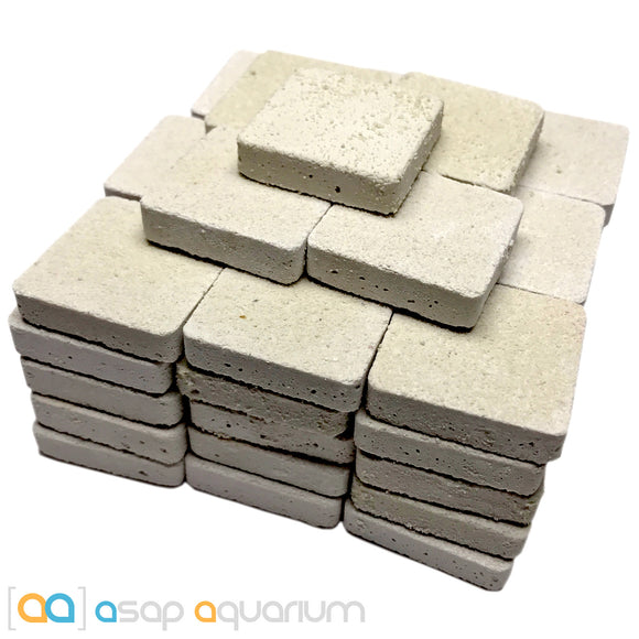 50 Reef Frag Tiles Cured for Live Coral Propagation - ASAP Aquarium