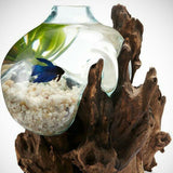Betta Fish Bowl Unique Molten Glass on Teak Driftwood D36 - ASAP Aquarium