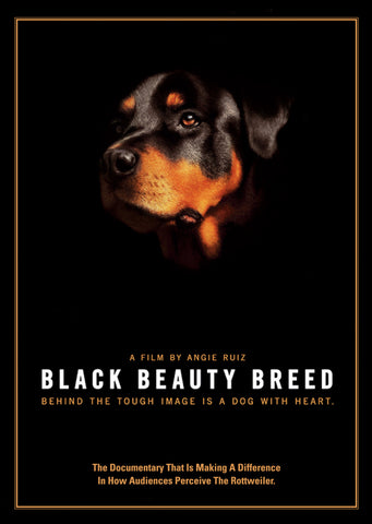 Black Beauty Breed DVD