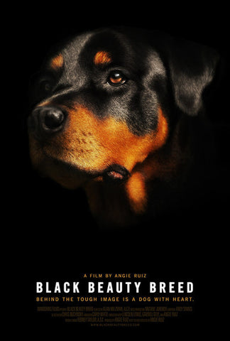 Black Beauty Breed 11 x 17 Poster
