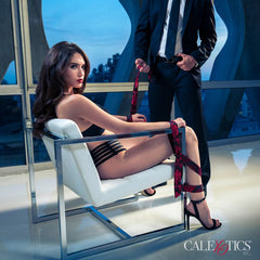 Scandal- Chair Restraint - Adults Dreams