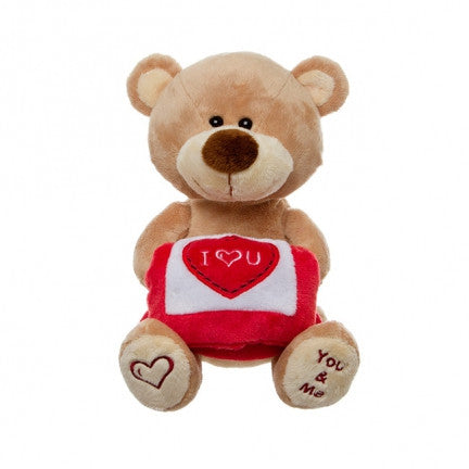 Teddy Bear with Pillow You & Me