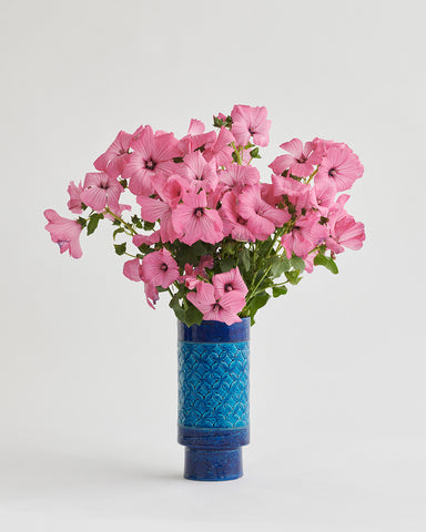 Aldo Londi for Bitossi Vase