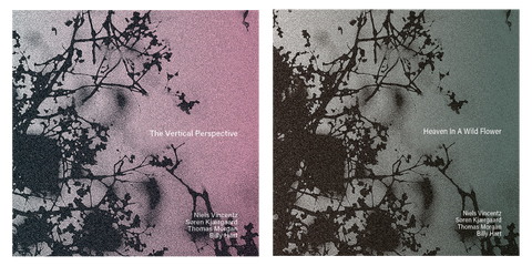 The Vertical Perspective & Heaven In A Wild Flower (2CD Bundle)
